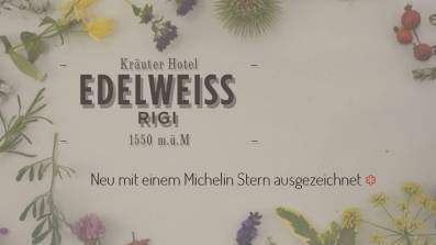Screenshot Website Kräuter Hotel Edelweiss