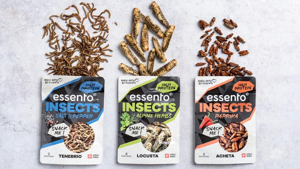 Insect-Snacks von Essento
